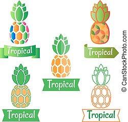 tropische , symbol, ananas, logo