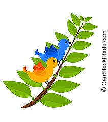 tropische , twee, kleurrijke, vogels