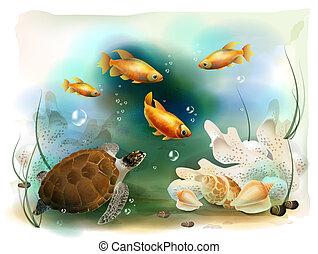 tropische , underwater, abbildung, welt