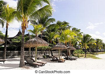 tropische , vakantiepark, tranquil