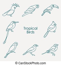 tropische , vector, vogels, illustratie, pictogram