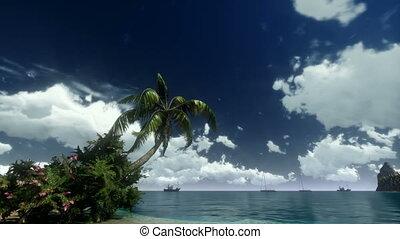 tropische , wrakkigheid, scène, tijd
