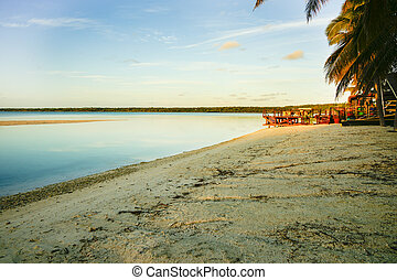 tropischer strand, an, sunrise.