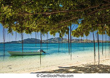 tropischer strand, fidschi, boot, bäume