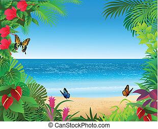 tropischer strand, hintergrund