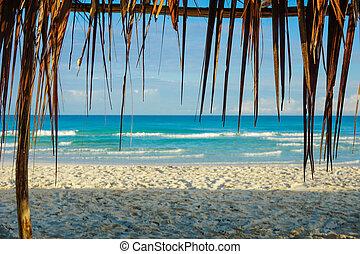 tropischer strand, in, kuba