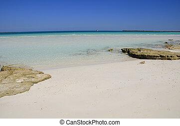 tropischer strand, kuba