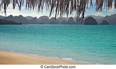 tropischer strand, mit, berge