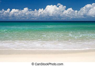 tropischer strand, paradies