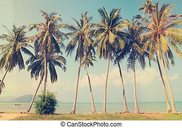 tropisk, årgång, strand, palmträdar