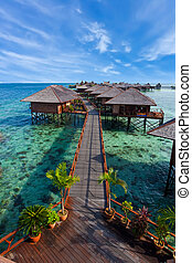 tropisk ö, gjord, man, tillflykt