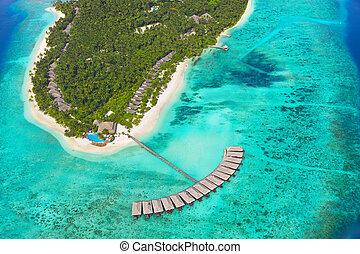 tropisk ö, hos, maldiverna