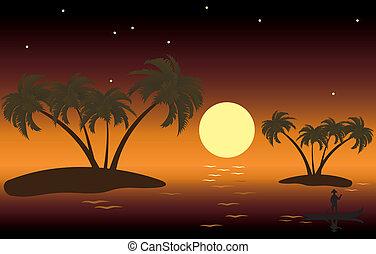 tropisk, öar, palm