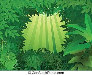 tropisk, baggrund, rainforest