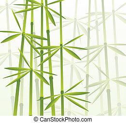 tropisk, bambu skog