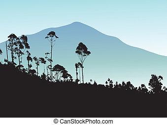 tropisk, bjerg, backgro, træ