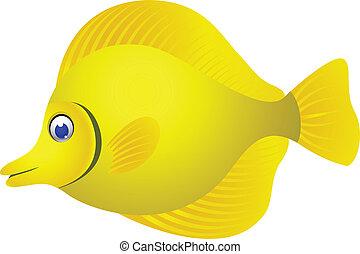 tropisk, cartoon, fish