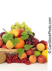 tropisk, citronträd, och, bär frukt