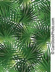 tropisk, kål, palm