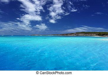 tropisk, lagune