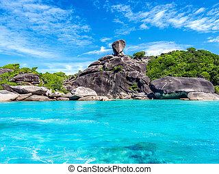 tropisk, landskap