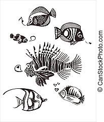 tropisk, monokrom, fiska