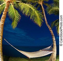 tropisk, natt, palmträdar, och, hängmatta