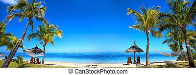 tropisk, panorama, strand