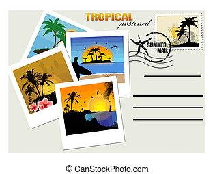 tropisk, postkort