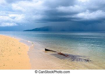 tropisk, regnig väder, strand