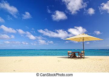 tropisk, sand strand