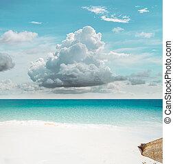 tropisk, sky, paradis
