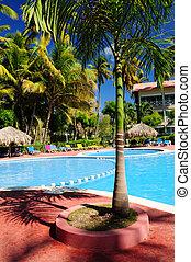 tropisk, tillflykt hotell, slå samman, simning