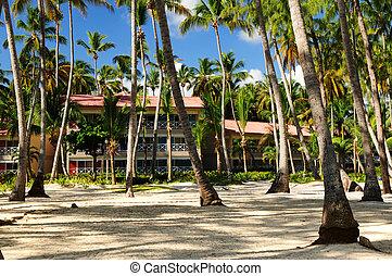 tropisk, tillflykt hotell