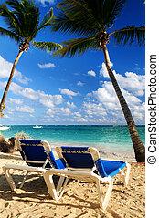 tropisk, tillflykt, strand, sandig