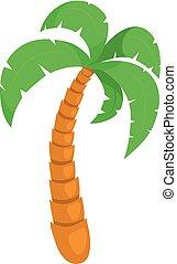 tropisk, träd., palm