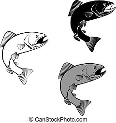 trout - isolated trout - clip art illustration and...