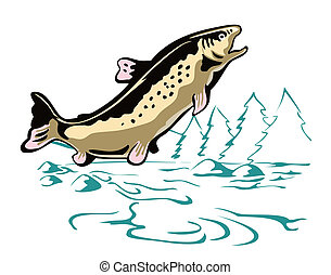 Trout Fish Leaping