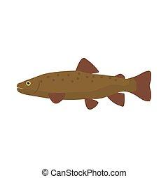 Trout fish side view vector icon illustration. Animal food sea wildlife nature. Ocean bass cartoon symbol art