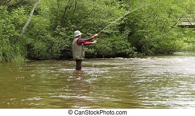 trout fisherman - fly fisherman on a small stream