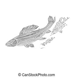 Trout salmonidae as vintage engraved black vector...