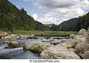 Trout stream and pond in Spearfish Canyon, Black Hills of South Dakota