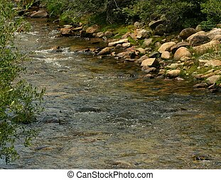 Mountain stream in southern Colorado is a great place to fish for trout.