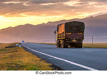truck driver on the road