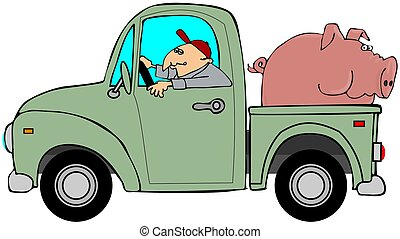 This illustration depicts a man driving an old green truck with a big pig in the bed.