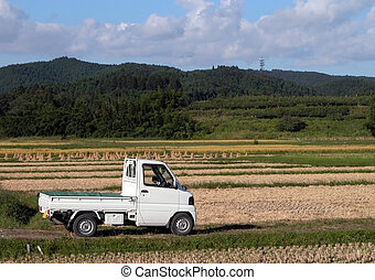 Truck in the field