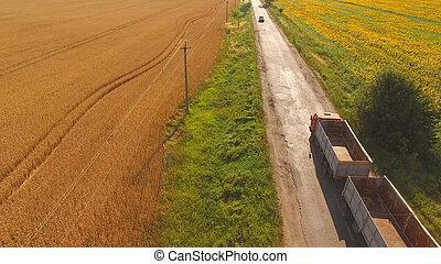 Truck near field. Nature and asphalt road. Basics of...