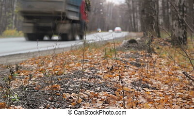 Truck on countryside autobahn highway driving away through autumn forest