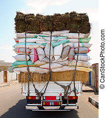 Truck overloaded bags, back view