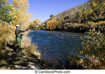 truckee, río, vuele pescando